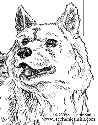 Chinese Zodiac Preview — the Dog