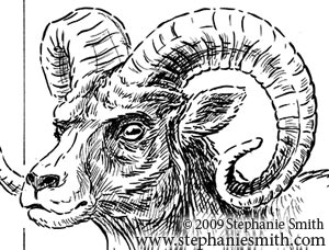 Chinese Zodiac Preview — the Sheep