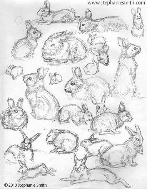 Bunches of Bunnies sketchbook page