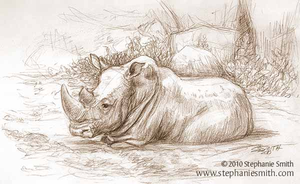 Rhino Wallow