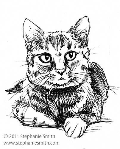 Quick Sketch - Tink